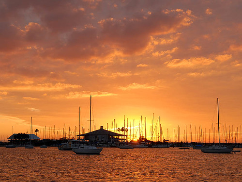 Sunset over Davis Islands Yacht Basin