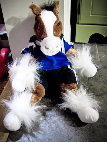 Soccer Horse?