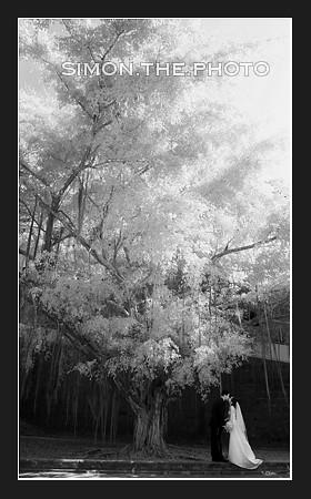 blog-miniko-sam-post-07.jpg