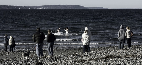 winter dip at golden gardens