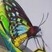 papillon mantra