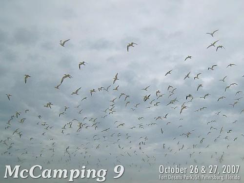 McCamping 9