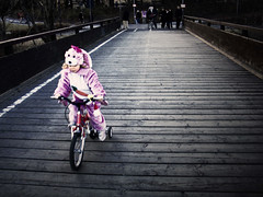 Go! Rabbit Rider GO! photo by motocchio