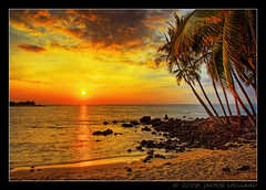 Hawaiian Palm Sunset photo by Mellard