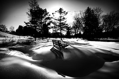 In the Shadows photo by Time Share