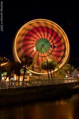 Myrtle Beach-8947