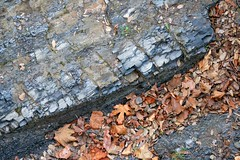 2b. Vertical rock strata close up Photo