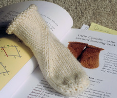 20071115 Coriolis learning sock