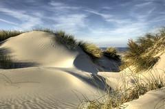 Dune by Dani℮l