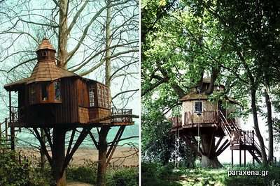 Amazon-Tree-Houses-11