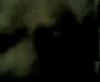 2505002650_abf28db95f_t