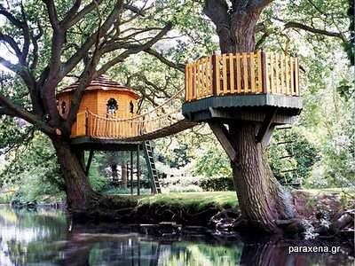 Amazon-Tree-Houses-08