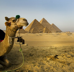 Giza photo by Michaeljohn