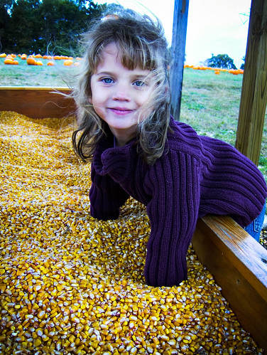 Hannah in the Corn