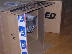 Artemis in a box