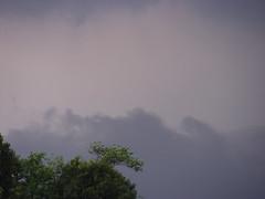Purpling clouds