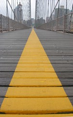 follow the yellow line