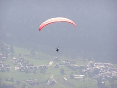 paraglider in the Rhone valley