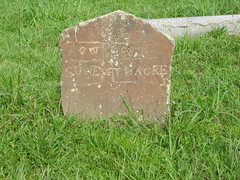 Son of Thacker ... Black Oak Cemetery, Dekalb County AL