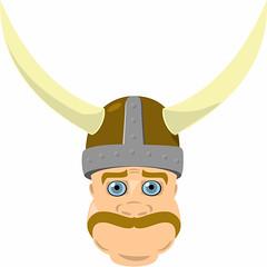Viking Joe
