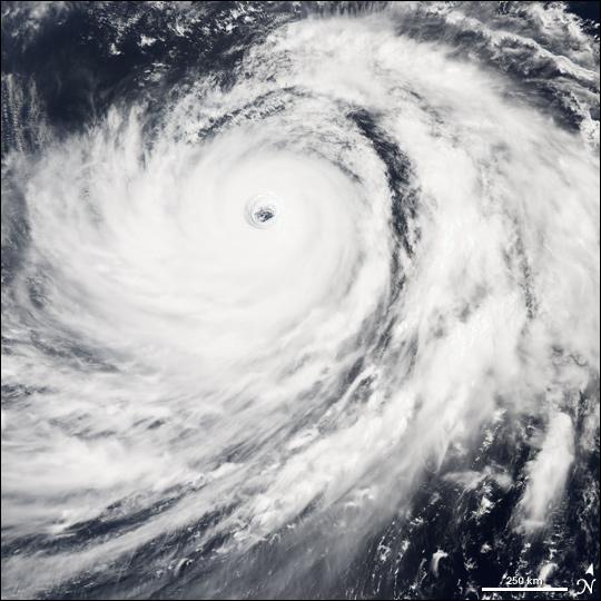 Typhoon #14
