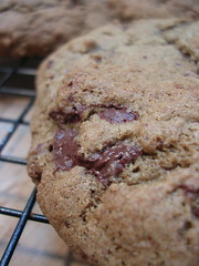 gf choc chip cookie VI