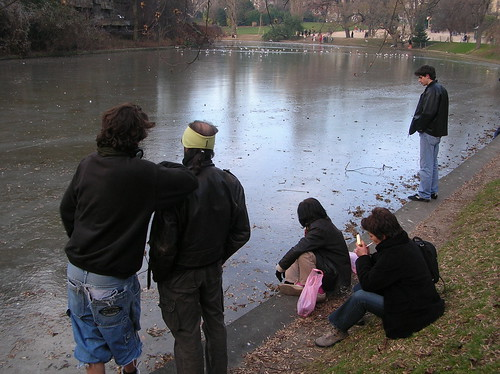 frozen lake at Buttes-Chaumont