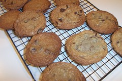 The Chewy - Chocolate Chip Cookies
