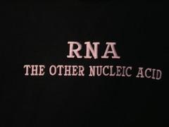 RNAShirt