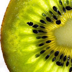 Kiwi Fruit photo by Pieter Pieterse