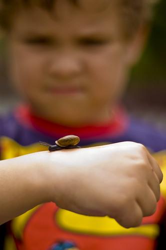 boy meets snail