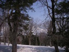 猿倉岳テレマークスキー (2)