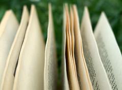 pagine di un libro sull'erba photo by spinetta