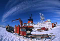The Antarctic/Arctic Dilemma