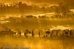 Brume Toscane 1 photo by Massimo Pelagagge