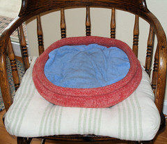 20080219 Cat Bed Empty