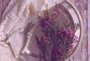 32432643730_e36c0b9b97_t