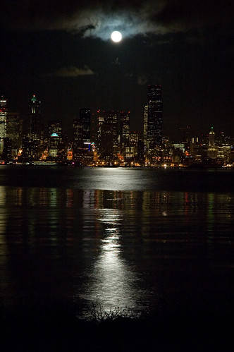 Seattle From Alki (by Mr Ferguson)