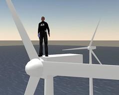 Virtual Sustainability