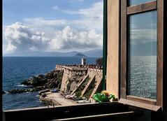 West View Window photo by Firenzesca