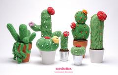 Crochettes - Cactus serie photo by Alícia