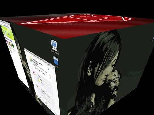 Linux - 3D Desktop