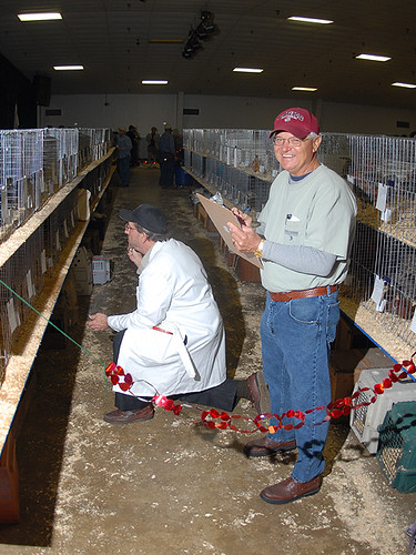 Inverness Poultry Show January 26, 2008