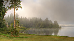 Lake Quinault - Misty Morning photo by rachel_thecat