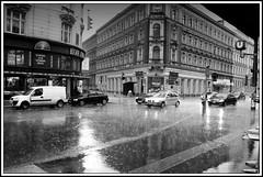 regen in wien - rain in vienna photo by ~shrewd~