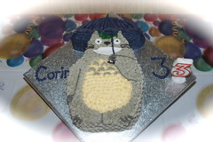 Totoro cake photo by britjap
