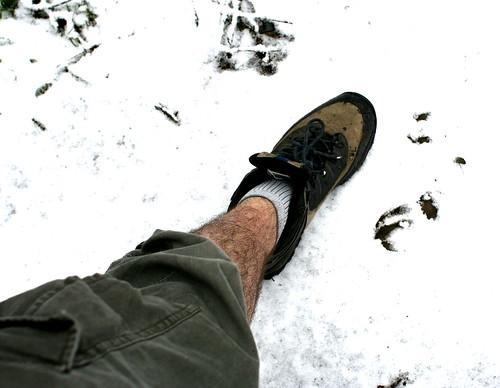 proper walk