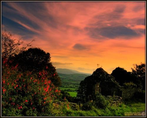 A DESERTED IRISH COTTAGE,