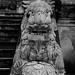 Vietnam-0639 © Bart Plessers