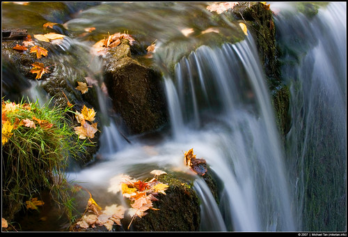 Hoggs Fall (by Tanner.)